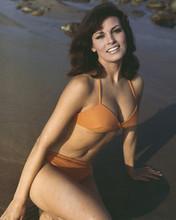 Actor Raquel Welch